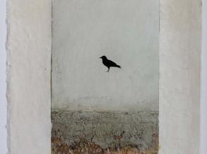 Hartman brown bird